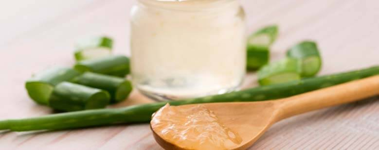 Aloe vera is known for it's antibacterial, antifungal and anti-irritant properties